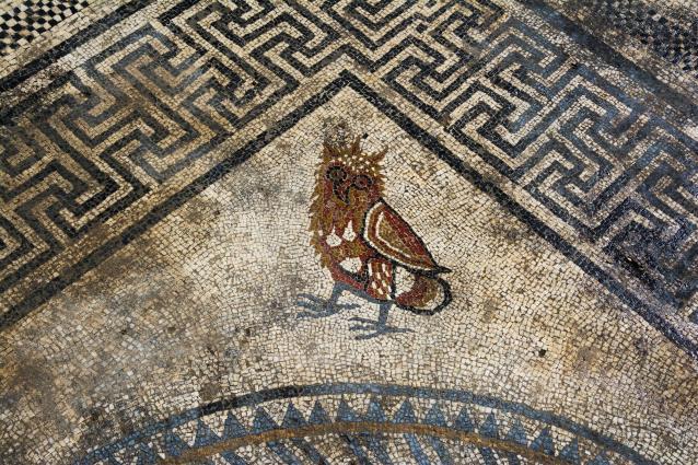 mosaico9_fdf91c54